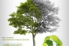 Posprzątajmy wspólnie leśne tereny Kornatki