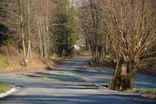 droga w Kornatce