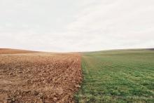 Wyniki badania gleb dla miejscowości: Brzączowice, Dobczyce, Kędzierzynka, Niezdów, Nowa Wieś i Stadniki