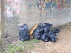 akcja sprzątania brzegów Raby