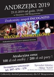Andrzejki w Brzączowicach 2019